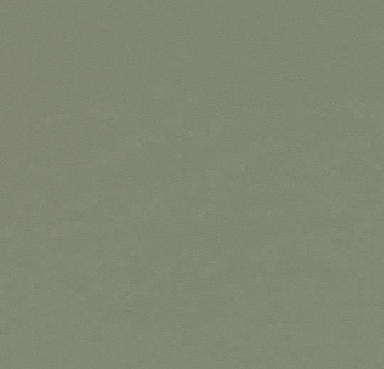 Olive 4184